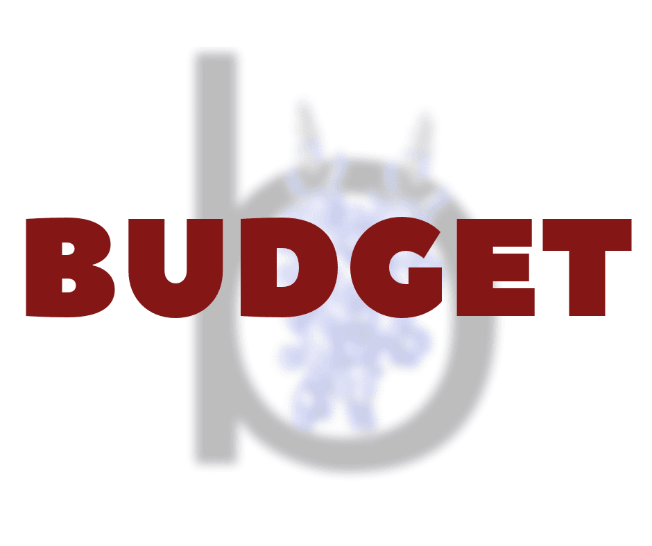 Budget Opens in new window