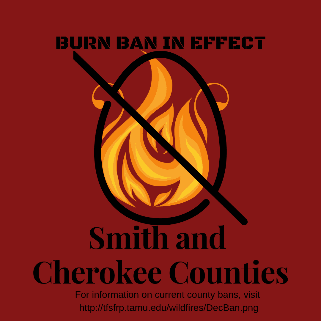 BURN BAN IN EFFECT (1)